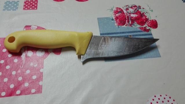 Cuchillo de Chef bushcratfero Img_2025
