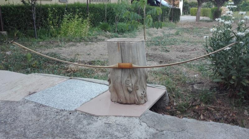 Arco de bambu y aligustre para el intercambio de arcos. Img_2078