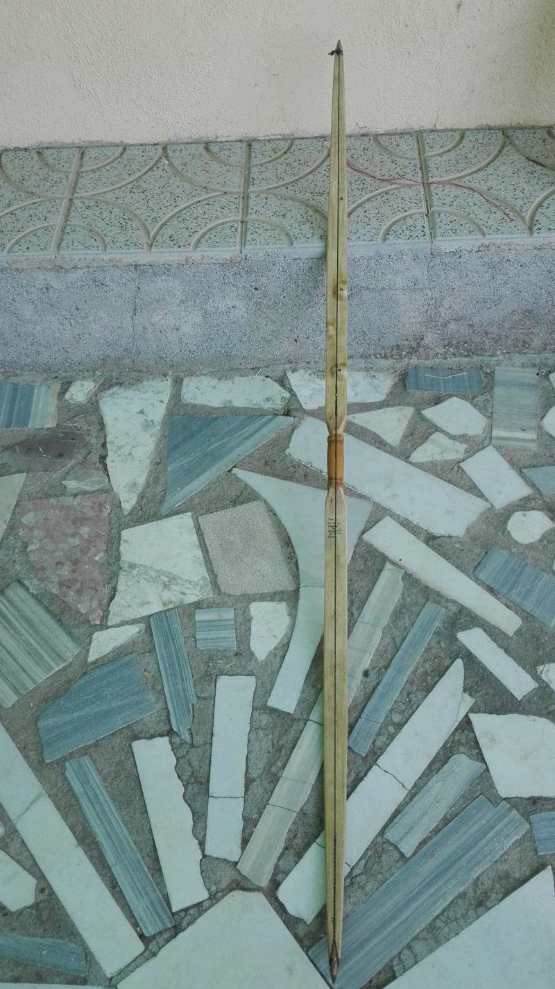 Arco de bambu y aligustre para el intercambio de arcos. Img_2079