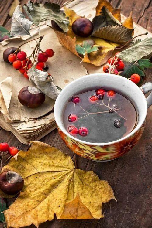 najromanticnija soljica za kafu...caj - Page 7 46131010