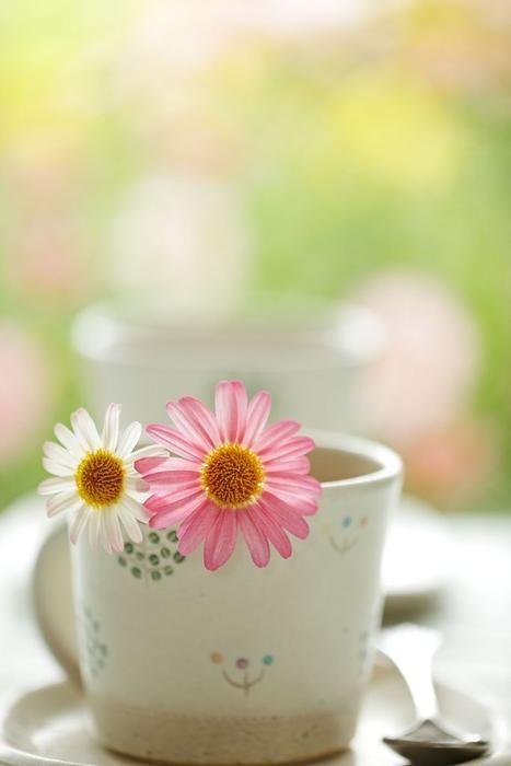 najromanticnija soljica za kafu...caj - Page 7 66r7mb10