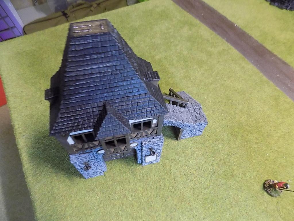 Porte médiévale imprimée en 3D - Page 3 Dscn7159