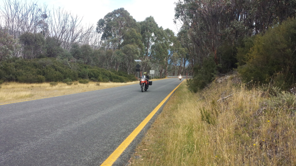Snowy/Southern ride, Sat 16 March 2019 - Page 2 20190335