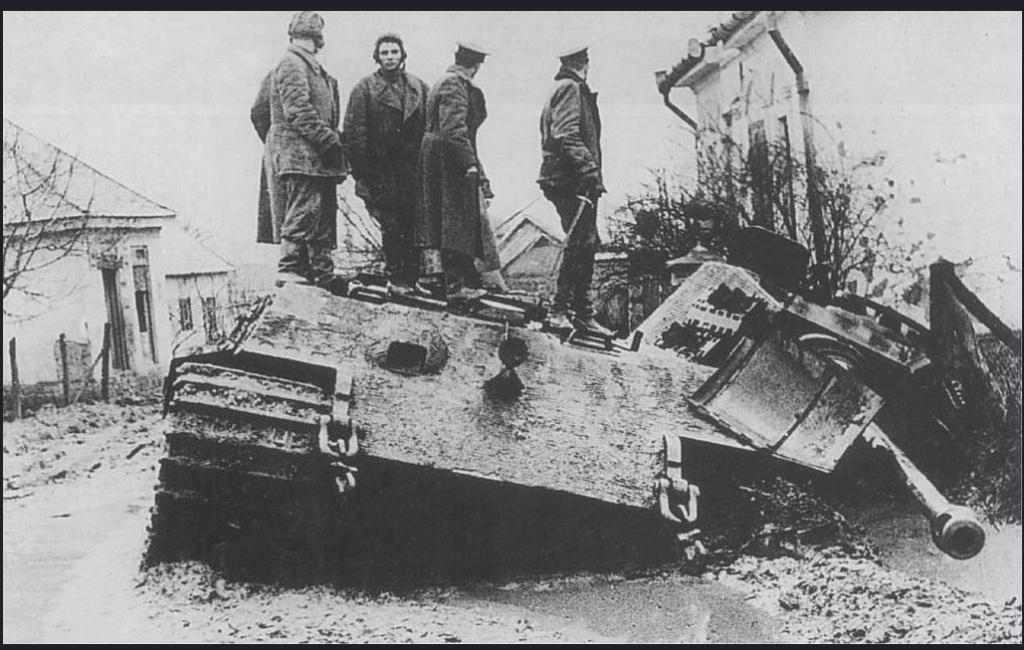 France 1945, visite de la bête - King Tiger Meng avec intérieur complet - Décors scratch intégral Tr10