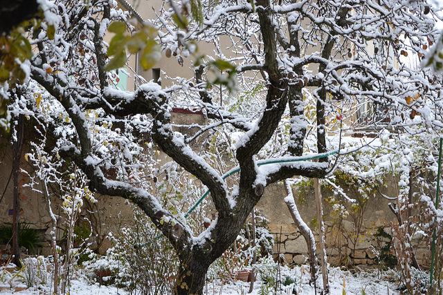 """Déficoncours """"silhouettes hivernales"""" - les votes 38716010"""