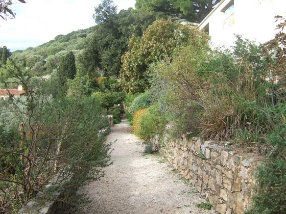 (83) Parc Saint-Bernard et Villa Noailles - Hyères - Page 7 Dscf0228