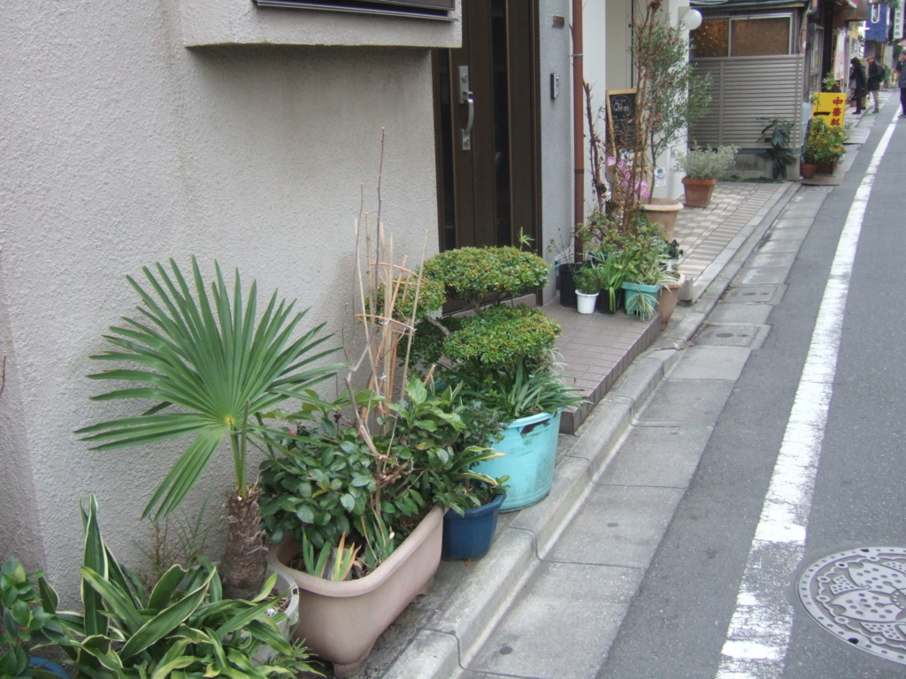 Japon Dscf1123