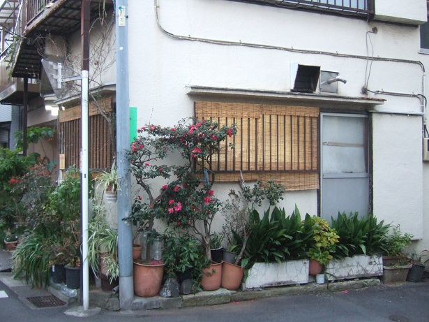 Japon Dscf1125