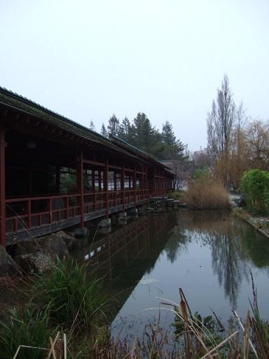 (44) Jardin japonais de l'île de Versailles - Nantes  Dscf2351