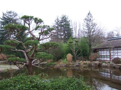(44) Jardin japonais de l'île de Versailles - Nantes  Dscf2353