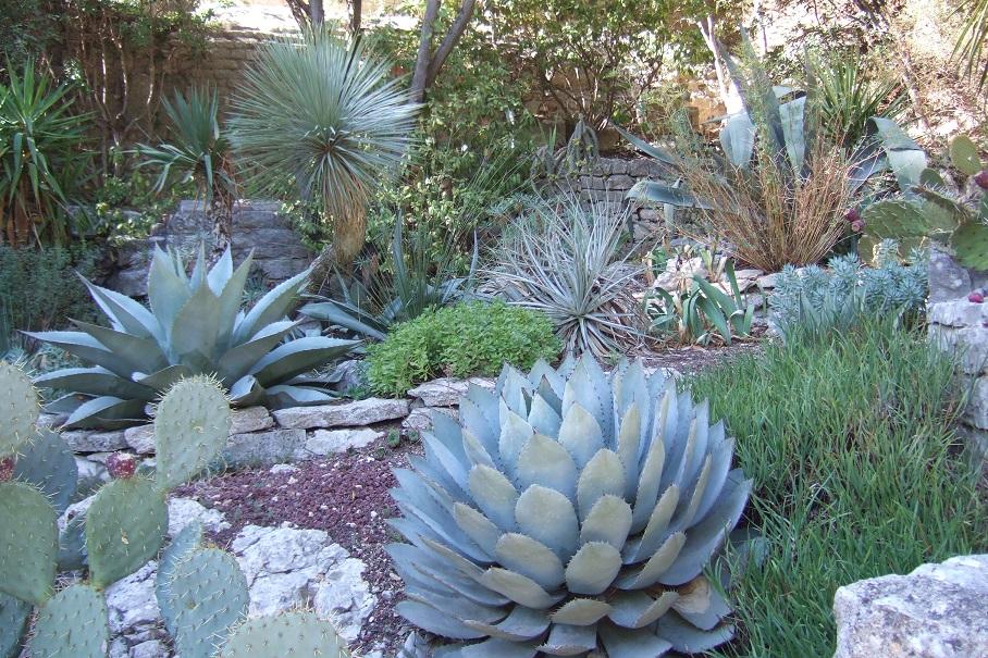 Jardins de la Fontaine  - Nîmes  (30) Dscf5733