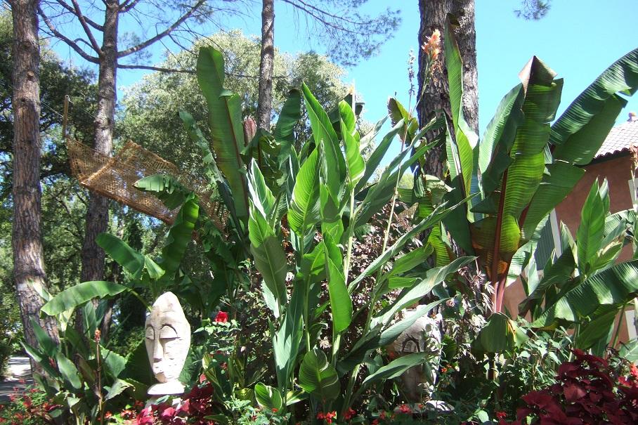 Jardins de la Fontaine  - Nîmes  (30) Dscf5737