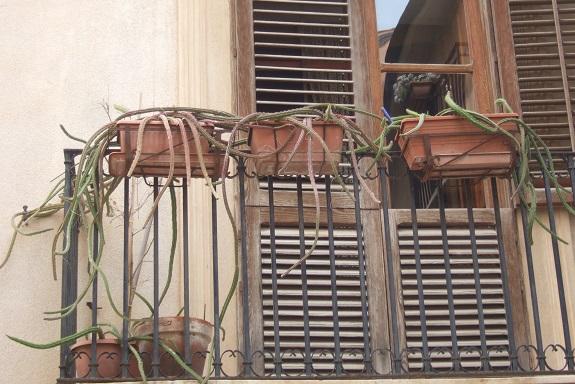 Des balcons de fous Dscf6812