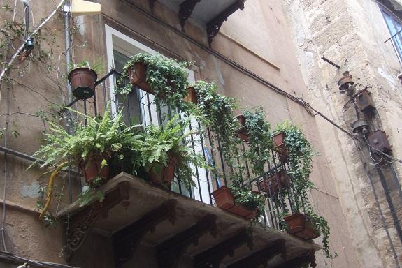 Des balcons de fous Dscf7325