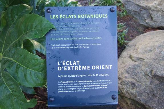 (44) Jardin des plantes - Nantes - Page 5 Dscf8664