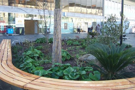 (44) Jardin des plantes - Nantes - Page 5 Dscf8666
