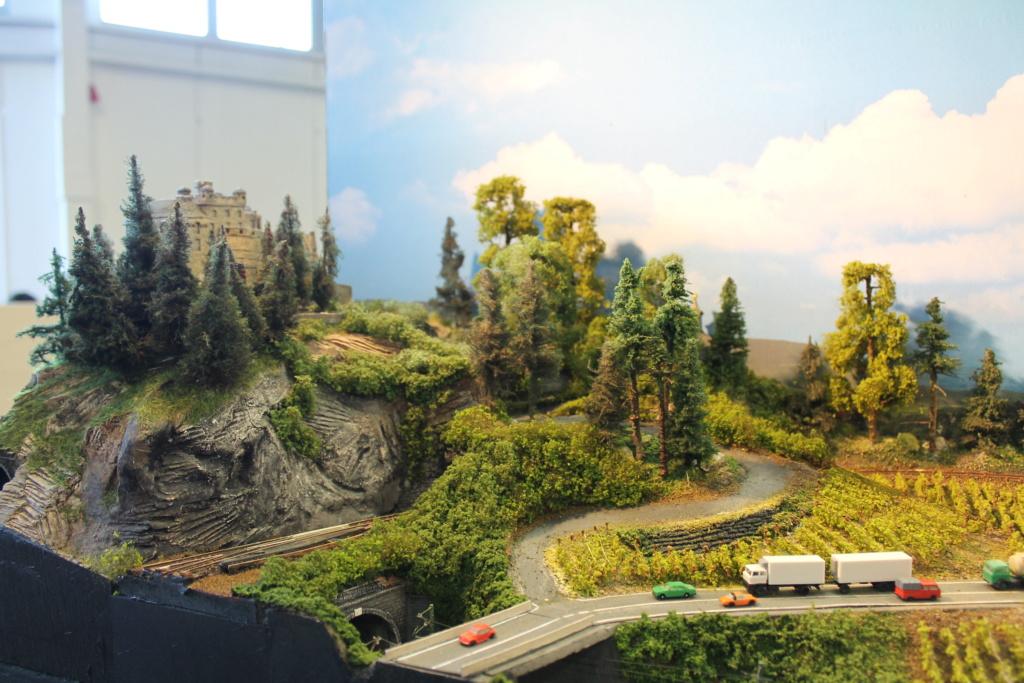 Expo Rail 2019à Houten - Pays Bas Img_4827