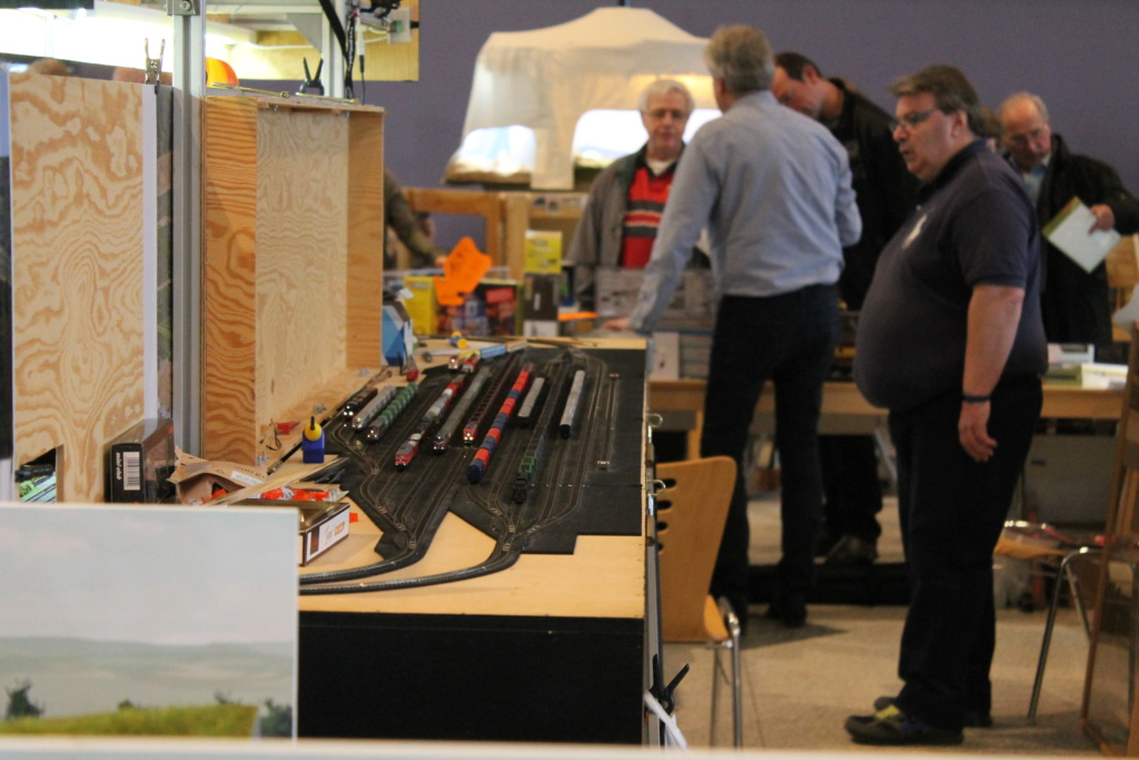 expo JUNGLINSTER ( LUXEMBOURG ) Img_4933