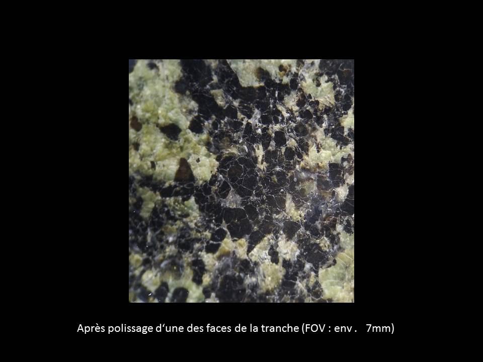 Une shergottite lherzolitique en lame mince Imageb10