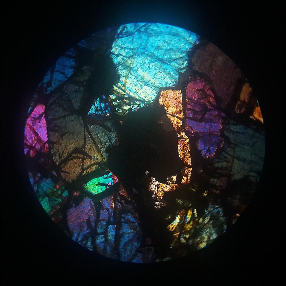 Uréilite (NWA 11032) Ureili11