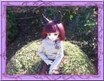 (tous nos résineux)HS - Poisson d'avril (p25) Ritsu10