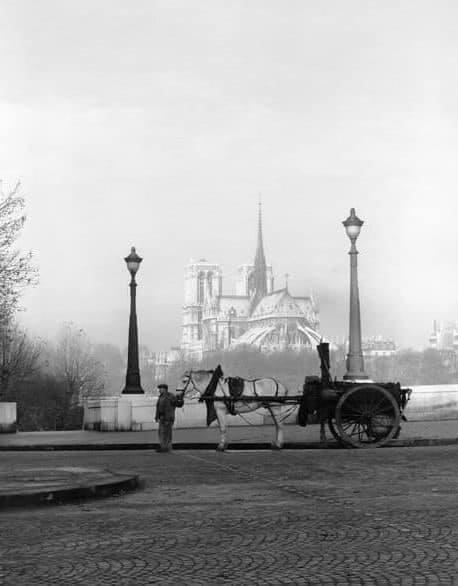 Terrible incendie de Notre Dame de Paris le 15 Avril 2019 au soir - Page 2 Zducre10