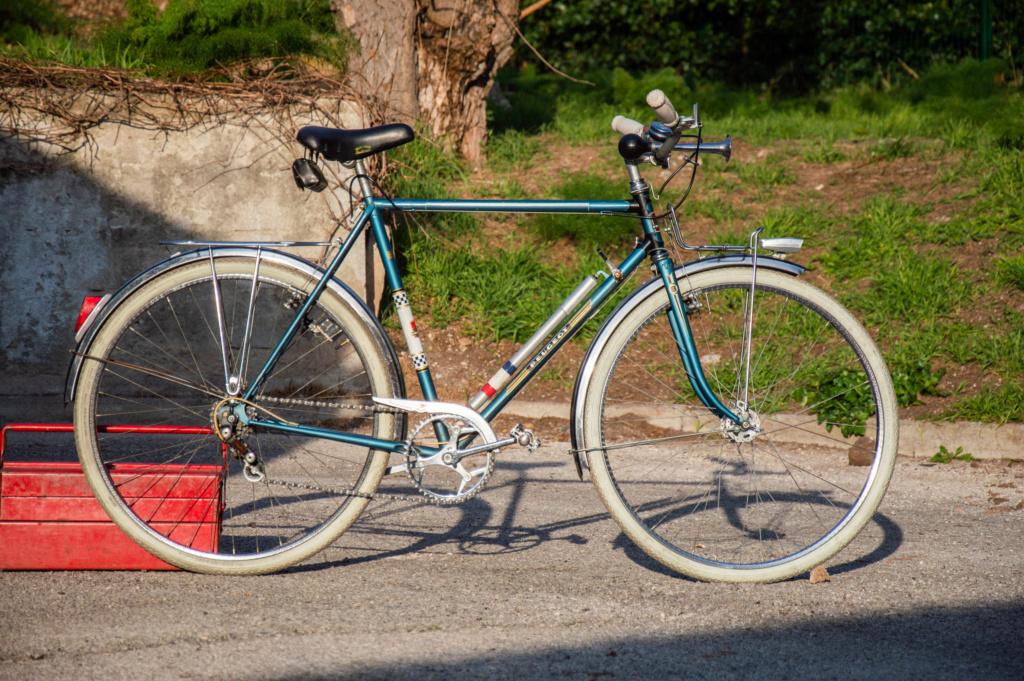 Mon ex (vélotaf) : Peugeot PL 50  _dsc2010