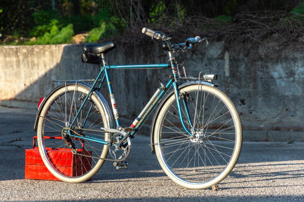 Mon ex (vélotaf) : Peugeot PL 50  _dsc2011