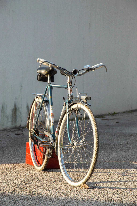 Mon ex (vélotaf) : Peugeot PL 50  _dsc2012