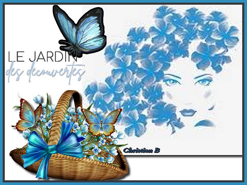 Défi du 25 Octobre / Panier & Papillons Sans_t15