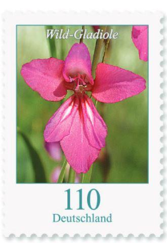 Blumengruß aus Deutschland - Seite 2 110_wi10