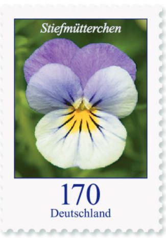 Blumengruß aus Deutschland - Seite 2 170_st10