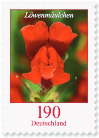 Blumengruß aus Deutschland - Seite 2 190_lz10