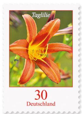 Blumengruß aus Deutschland - Seite 2 1_tagl10