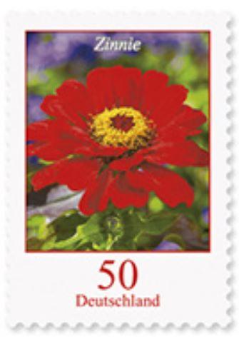 Blumengruß aus Deutschland - Seite 2 1_zinn10