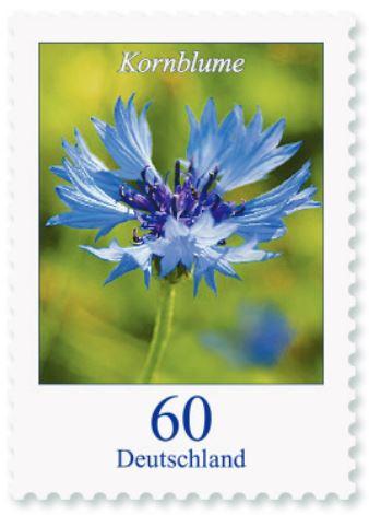 Blumengruß aus Deutschland - Seite 2 60_kor10