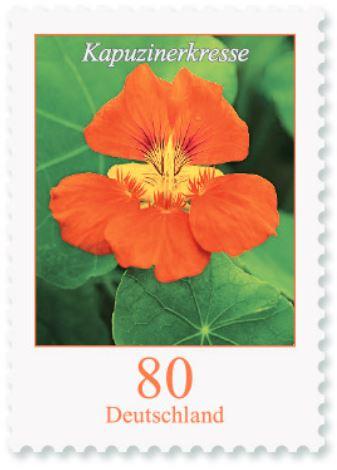 Blumengruß aus Deutschland - Seite 2 80_kap10