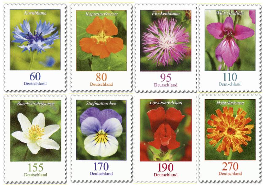 Blumenflut aus Deutschland Blumen10