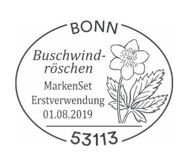 Ausgaben 2019 Deutschland - Seite 2 Blumen11