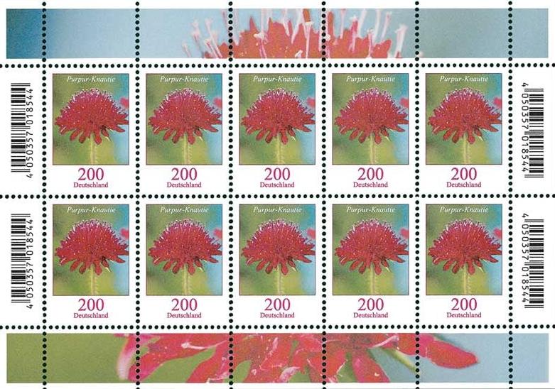 Ausgaben 2020 Deutschland - Seite 2 Blumen18