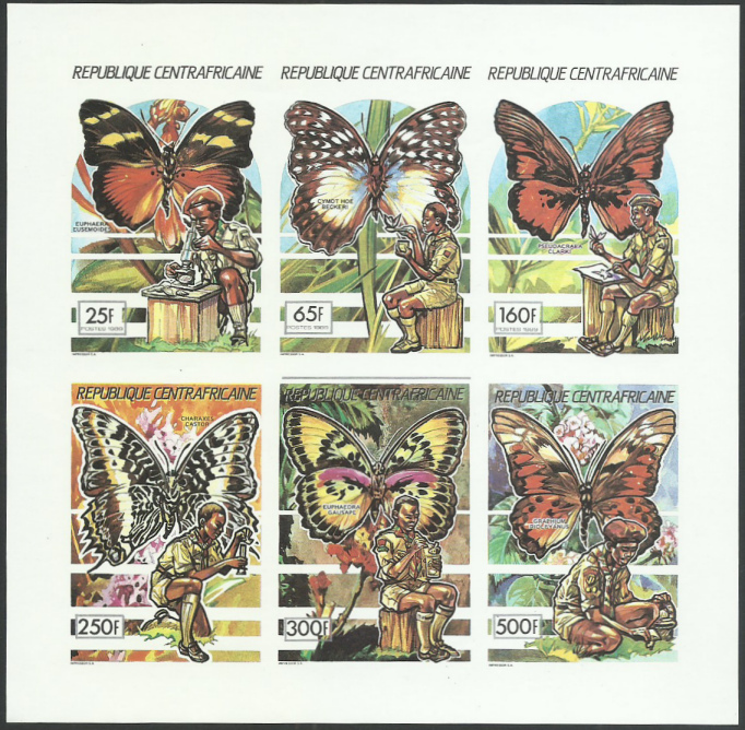 Schmetterlinge Pfadfi11