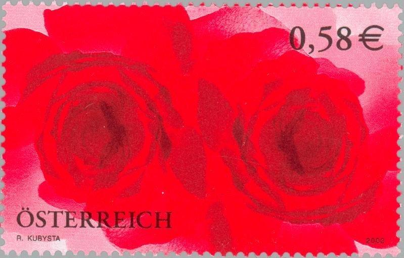 Rosen Roses10