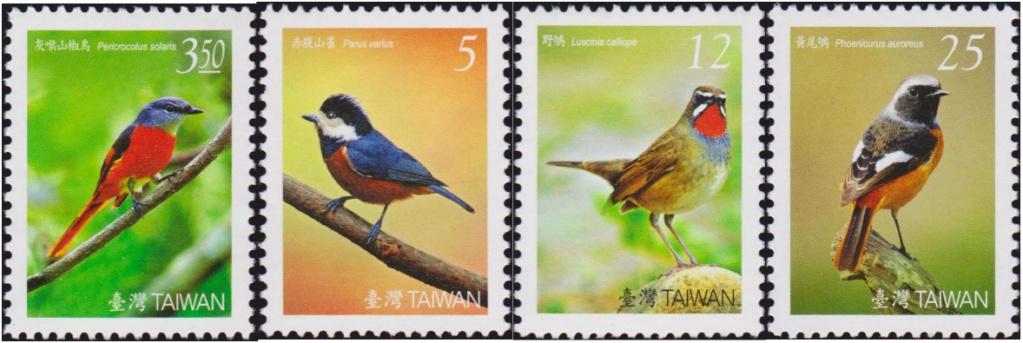 Vögel Taiwan10