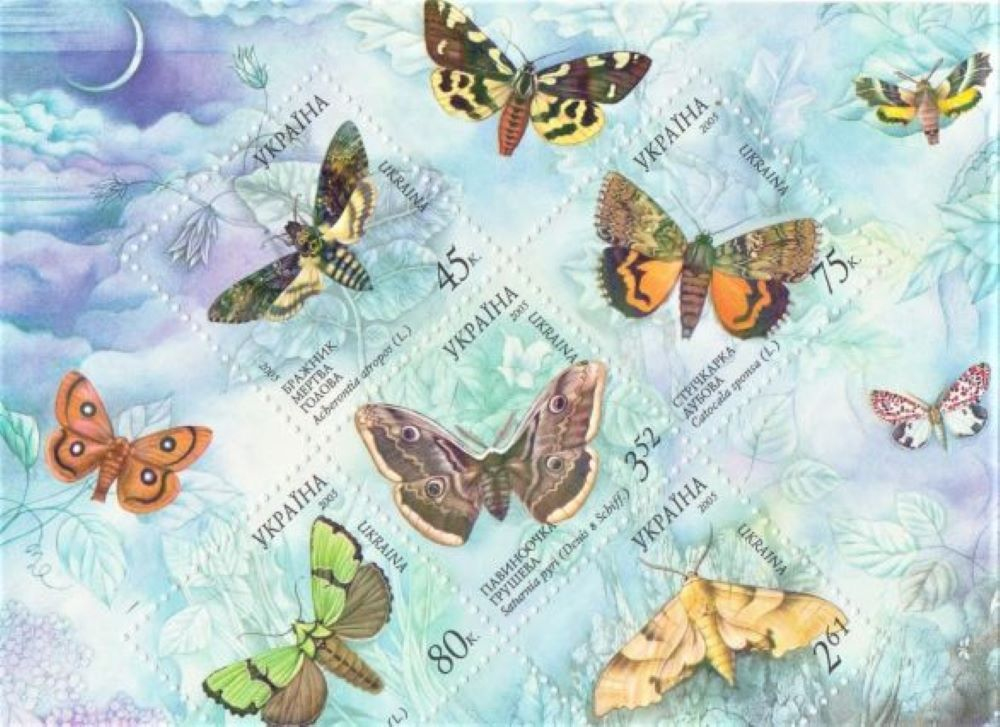 Schmetterlinge Ukrain10