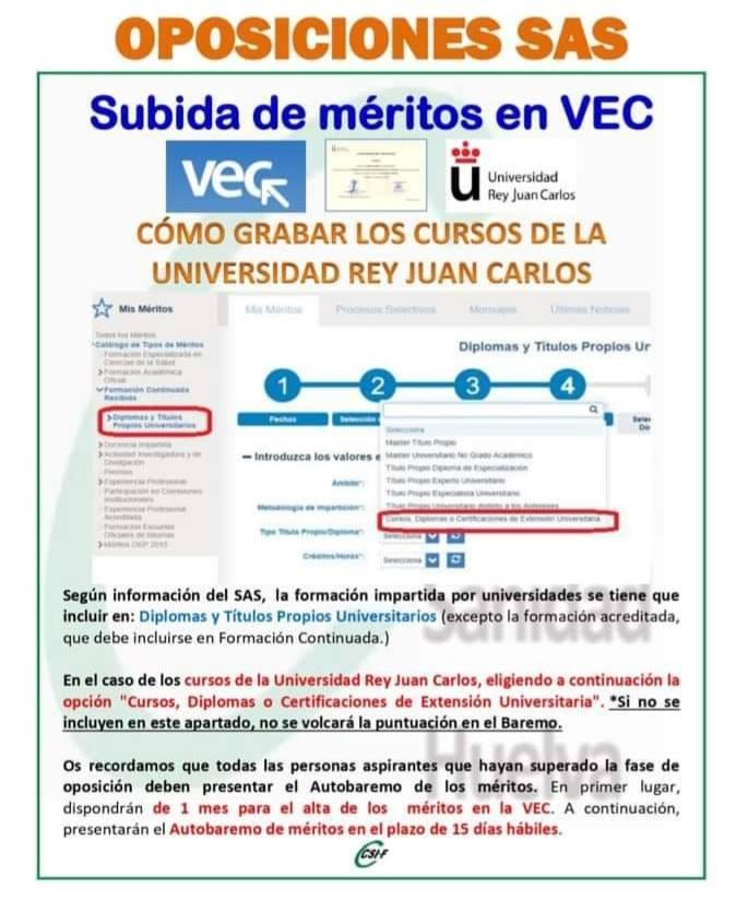 CURSOS DE UNIVERSIDA REY JUAN CARLOS 66719311