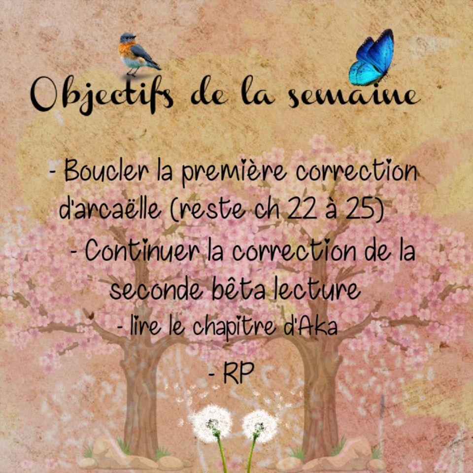 Facebook A.L Legrand - Arcaëlle et autres [Page Facebook Auteur] 94573110