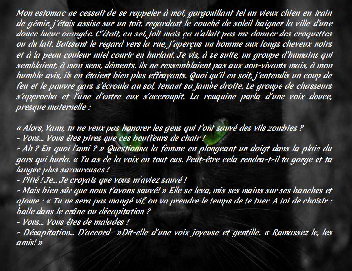 """Page FB """"Arcaëlle et autres - A.L Legrand"""" Ch_3_110"""