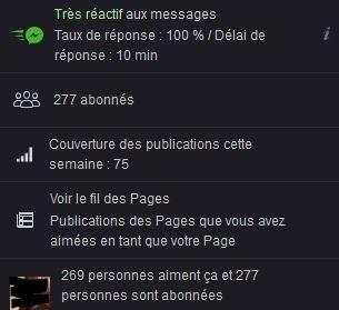 Facebook A.L Legrand - Arcaëlle et autres [Page Facebook Auteur] Stat13