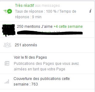"""Page FB """"Arcaëlle et autres - A.L Legrand"""" Stat17"""
