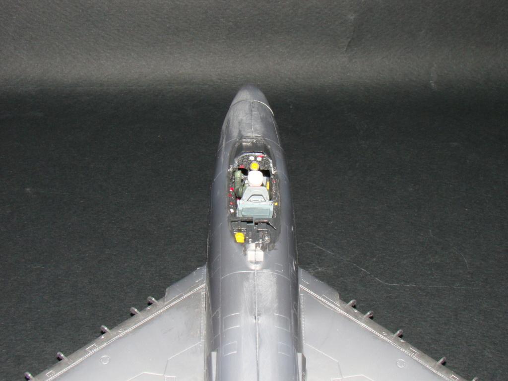 [Revell] F-86D 1/48 Dsc07529